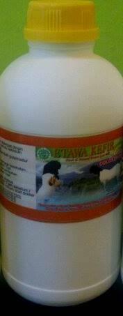 kefir-susu kambing etawa