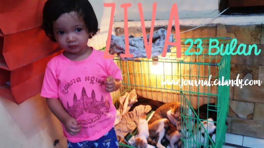 Milestone Anak 23 Bulan