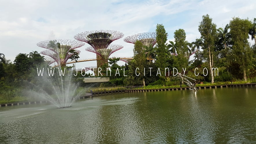 Anak Traveling Garden By The Bay