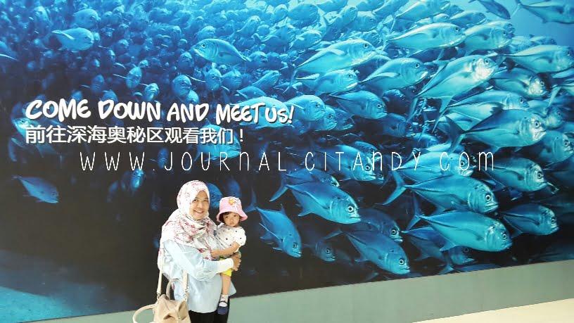Traveling ke SEA Aquarium Singapore