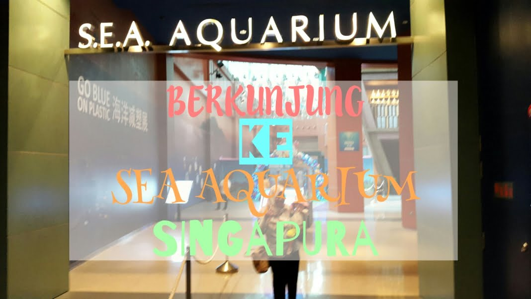 SEA Aquarium Singapore With Toddler